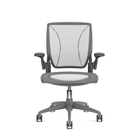 Pinstripe Mesh Silver World Task Chair, Adjustable Arms, Gray Frame